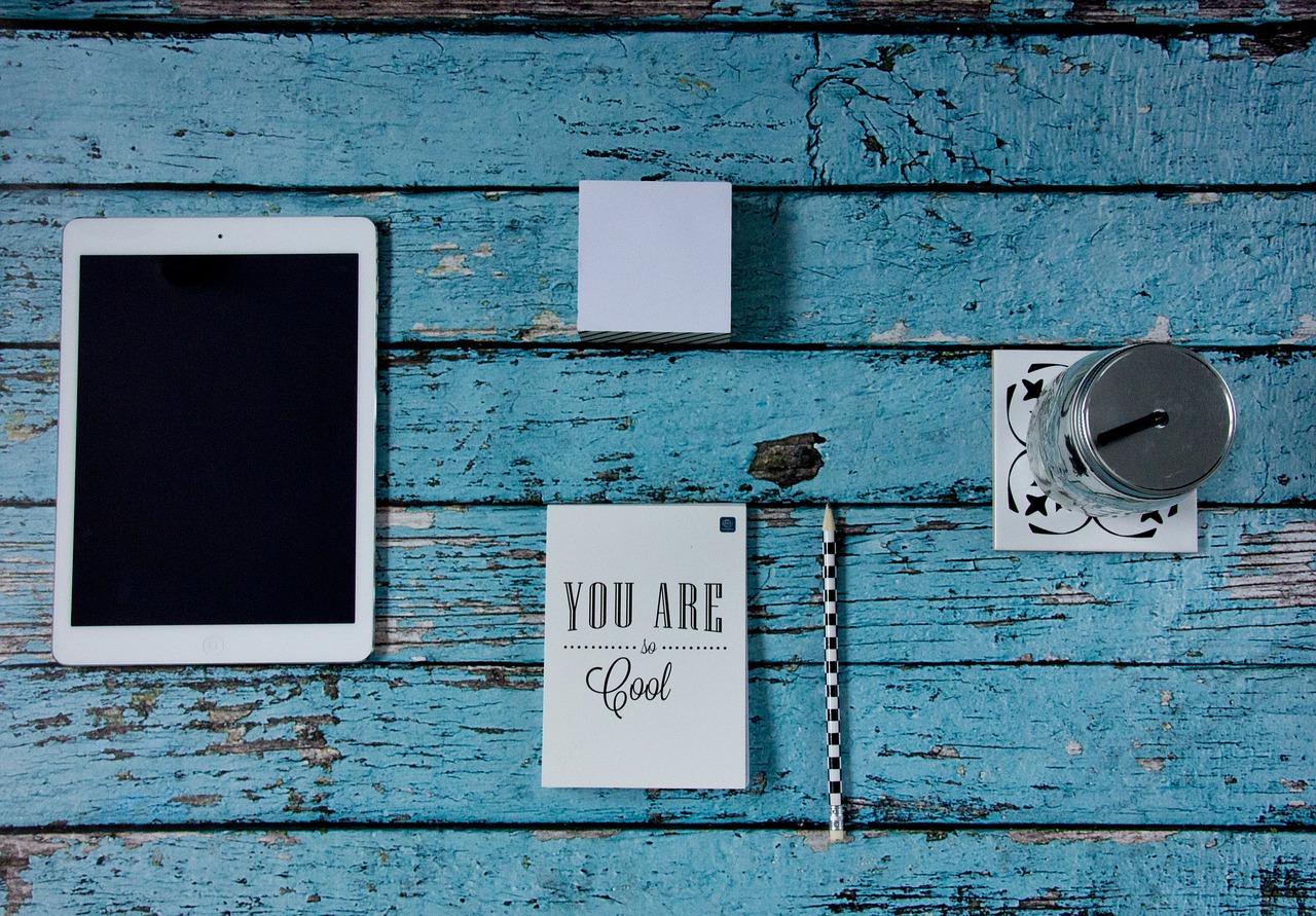 JAL ANA 会社貸与『iPad』『iPad mini』の履歴を削除する方法