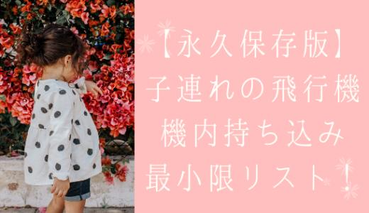 【永久保存版】子連れの飛行機!機内持ち込み最小限リスト!